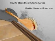 How to Clean Mold Affected Areas