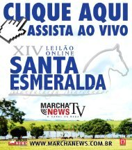 Clique Aqui XIV SANTA ESMERALDA
