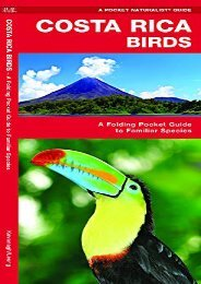 [+]The best book of the month Costa Rica Birds: A Folding Pocket Guide to Familiar Species (A Pocket Naturalist Guide) [PDF]