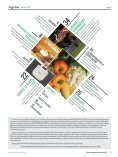 Revista Vegetus nº 31 (Marzo- Junio 2019) - Page 3