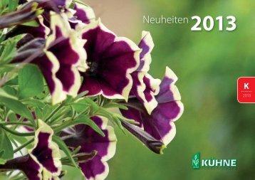Petunia - Kühne Jungpflanzen GbR