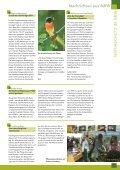 Bruten in der Röhre - NABU NRW - Seite 3