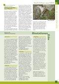 Bruten in der Röhre - NABU NRW - Seite 7
