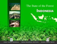 The State of the Forest: Indonesia - Global Forest Watch
