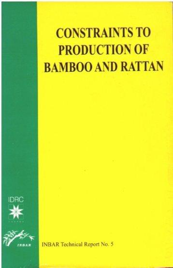 50 seeds  Bambusa Oldhamii Yellow cain bamboo USA Seller