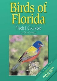 (RECOMMEND) Birds of Florida Field Guide eBook PDF Download