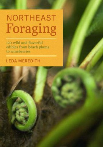 -RECOMMEND-Northeast-Foraging-120-Wild-and-Flavorful-Edibles-from-Beach-Plums-to-Wineberries-eBook-PDF-Download
