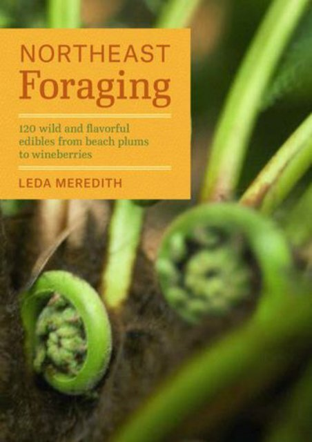 (RECOMMEND) Northeast Foraging: 120 Wild and Flavorful Edibles from Beach Plums to Wineberries eBook PDF Download