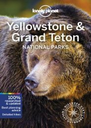 (SECRET PLOT) Lonely Planet Yellowstone  Grand Teton National Parks eBook PDF Download