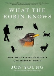 (STABLE) What the Robin Knows: How Birds Reveal the Secrets of the Natural World eBook PDF Download
