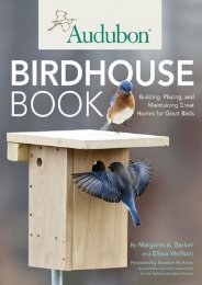 -BARGAIN-Audubon-Birdhouse-Book-Building-Placing-and-Maintaining-Great-Homes-for-Great-Birds-eBook-PDF-Download