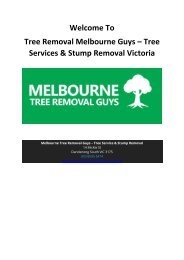Tree Removal Melbourne Guys