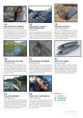 La Pesca Mosca e Spinning 2/2019 - Page 5