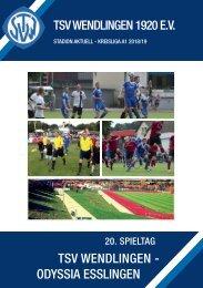 TSV Wendlingen Stadionheft 20. Spieltag