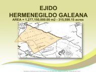 Predio_RCS_Galeana_ FOR SALE