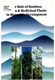The Role of Bamboo, Rattan and Medicinal Plants in Mountain ...