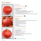 Pumpkin 2019 - Page 4