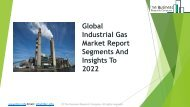 Global Industrial Gas Market Report Segments And Insights To 2022