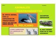 ANIMALES SORPRENDENTES 1