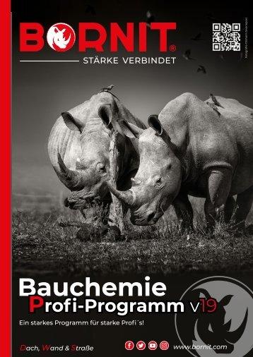Bauchemie Profi-Programm v19 - 2019_screen