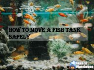 How to Move a Fish Tank Safely