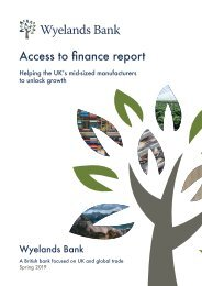 Wyelands Bank Access to finance report - Spring-2019
