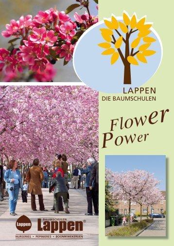 Flower Power - Baumschulen Lappen