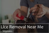 Get the Service of Lice Removal Near Me | Nitpixies