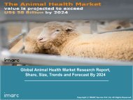 Animal Health Market: Global Share, Size, Trends, Growth and Forecast Till 2024