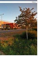 Stadionzeitung_2018_2019_12_S04_Ansicht - Page 7