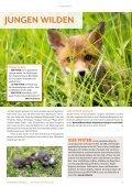 stadtMAGAZIN köln-süd | Ausg. April/Mail 2019 - Page 5