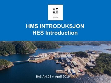 BAS.AH.03_UmoeMandal_HMS-Introduksjon_April2019