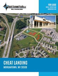 Cheat Landing Development Marketing Flyer
