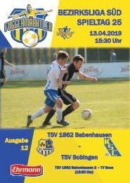 20190413 Fuggermärktler TSV 1862 Babenhausen – TSV Bobingen