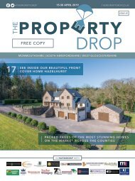 Property Drop Issue 49