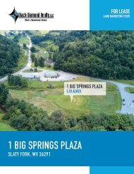 1_Big_Springs_Plaza_Marketing_Flyer