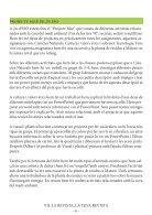 Vila Revista n5 - Page 6