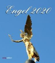 engel 2020