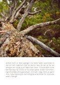 Urskog i Sjodalen - Page 7