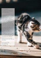 Tierheim Magazin - Seite 6