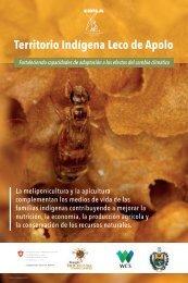 Territorio indígena Leco de Apolo meliponicultura y apicultura