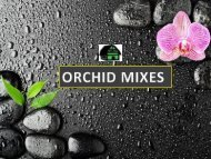 Best orchid mixes for phalaenopsis orchids.