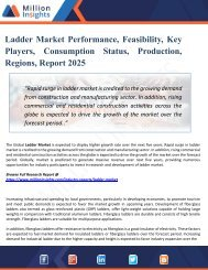 Ladder Market Growth, Market Share, Demand, Research, Sales, Trends, Supply, and Forecast from 2025