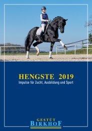 Hengste 2019 --- Gestüt Birkhof I Donzdorf
