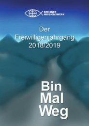 Bin Mal Weg - Der Freiwilligenjahrgang 2018/2019