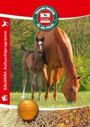 SALVANA - Pferdekatalog - Aufzucht