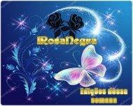 RosaNegra-1semana-Maio2019