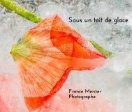 Sous un toit de glace, France Mercier