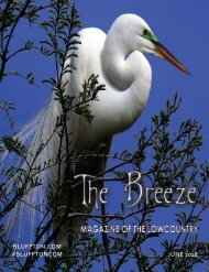 The Breeze Magazine of the Lowcountry, JUNE 2018