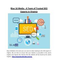 Blue 16 Media - A Team of Trusted SEO Experts in Virginia